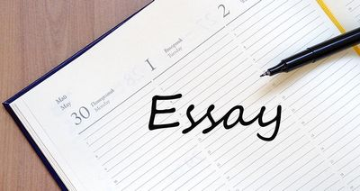 What You need to Know About 123 Essay  In the occasion